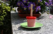 Ghiaccioli yogurt e fragole